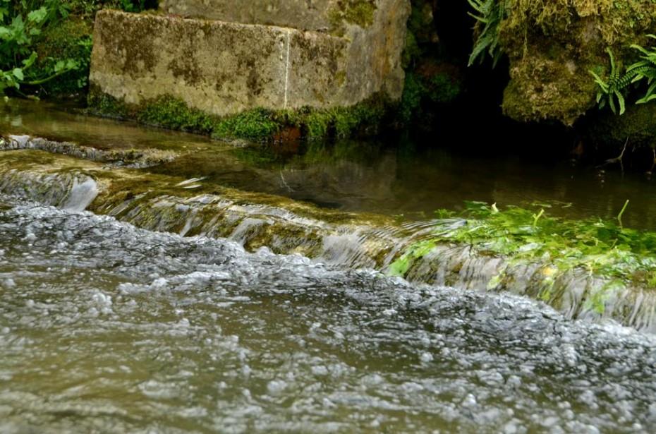 Débit rapide de l'eau de source