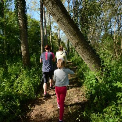 Randonnée dans les bois du Lay