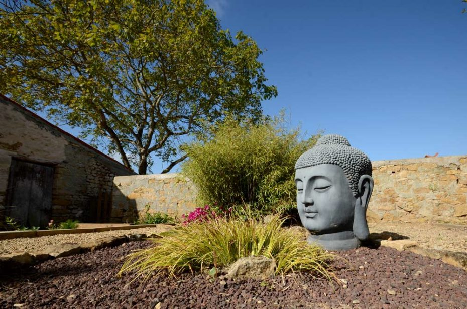 Buddha head statue in the middle of the zen gaden